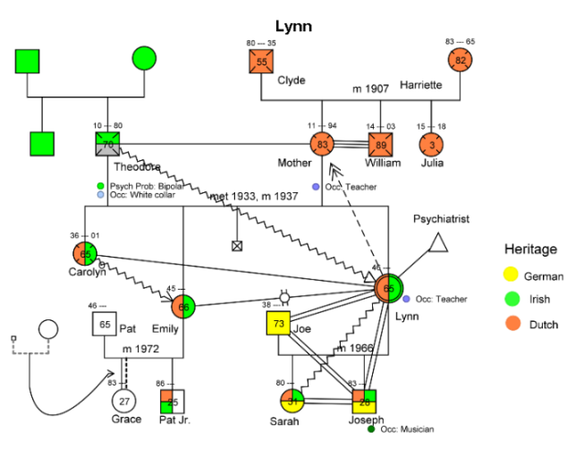 Sample Genogram for Lynn